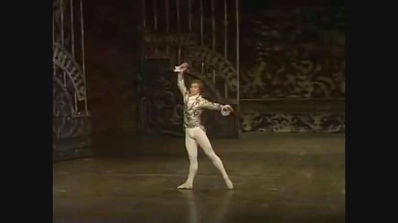 Па де де из балета Щелкунчик Нуриев Фонтейн