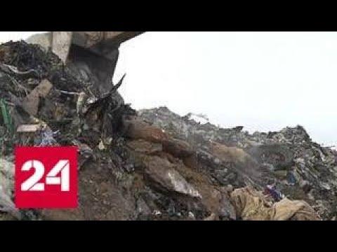 Раздельный сбор мусора: результат эксперимента в Подмосковье превзошел все ожидания - Россия 24
