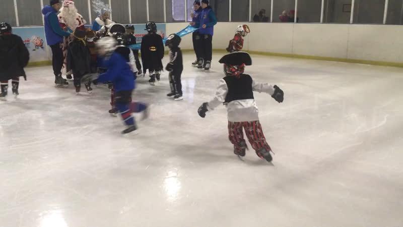 Елка на хоккее