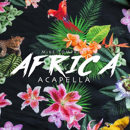 Mike Tompkins альбом Africa (Acapella)
