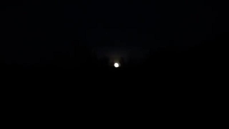 Лук выживания (фонарь Fenix HL60R, мультитул Ganzo G302B)