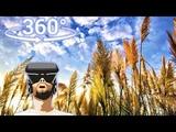 Панорамное Видео 360 VR 4K для очков виртуальной реальности.вода, ветер, облака time lapse. Релакс