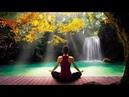Música Para Relajarse com Flauta Indigena y Sonidos de la Naturaleza - Relajar la Mente y Dormir