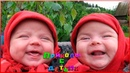 Попробуй Не Засмеяться С Детьми - Смешные Дети!Лучшие ПРИКОЛЫ С ДЕТЬМИ 27