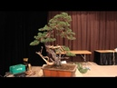 David Benavente's demo at Bonsai-San