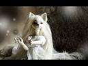 Белая Лиса Шарнирная кукла BJD