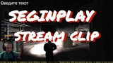 S.T.A.L.K.E.R. stream clip - SEGINPLAY