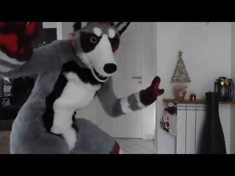 Fursuit Wolf Dog