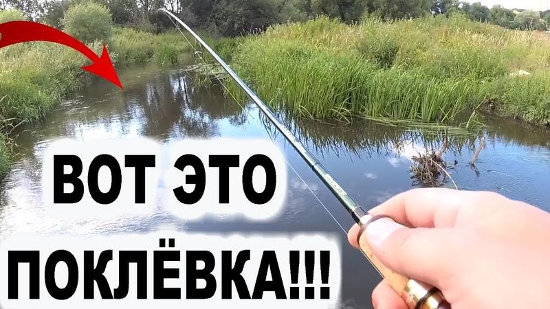 ВОТ ЭТО ПОКЛЕВКА Он чуть не вырвал спиннинг Рыбалка 2019