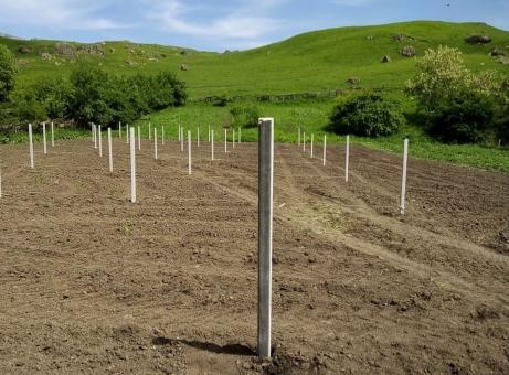 В КЧР определили кооператив, который займется закладкой мини-садов в Урупском районе