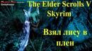 Прохождение Skyrim 009 - разводим живность без смс и регистрации