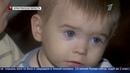 Семья, в которой 19 детей, живёт в разваливающемся доме