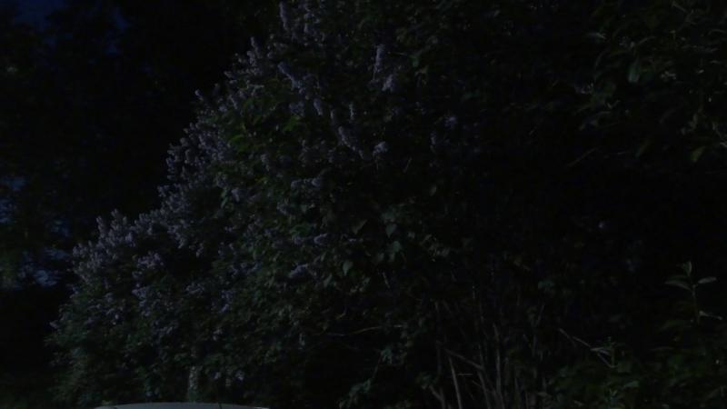 26 06 18 Новоуральск Соловьиные трели 1 смотреть онлайн без регистрации