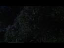 26 06 18 Новоуральск Соловьиные трели 1