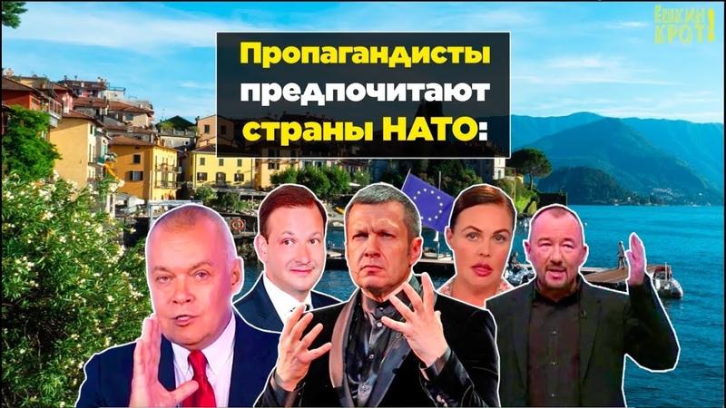 Телепропагандистов тянет в страны НАТО