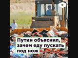 Путин объяснил, зачем уничтожать санкционные продукты ROMB