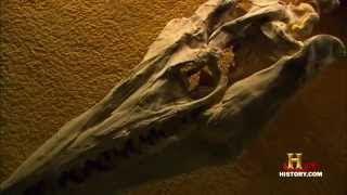 Тайны Доисторических Монстров 2008 History Channel