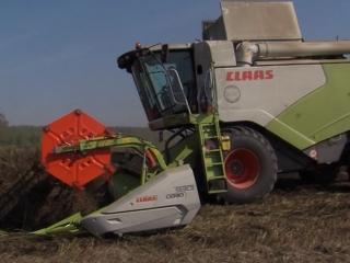 Аграрии Марий Эл завершают уборку на полях