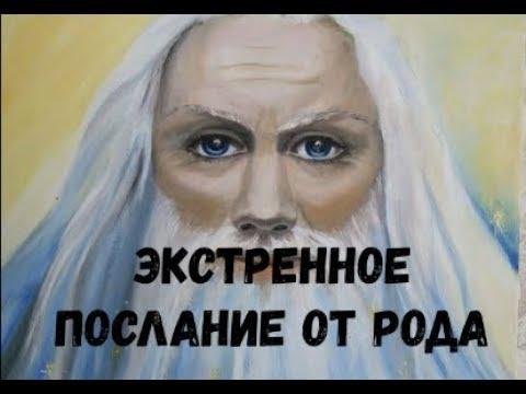 Экстренное послание от РОДА Игорь Полуйчик