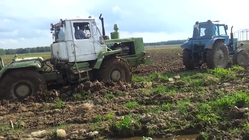 Беларус вытаскивает Т-150К из грязи