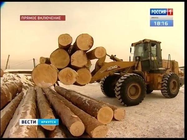 Самым криминальным лесным регионом Иркутскую область назвал глава Рослесхоза Иван Валентик