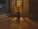Танец живота в турецком стиле кабарэ и в египетском стиле