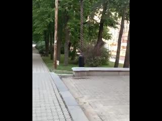 Эксгибиционист в Ставрополе Регион-26   Ставрополь