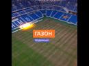 Покрытие на стадионе «Динамо» признали травмоопасным - Москва 24