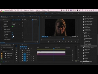 Premiere Pro CC  Create a Basic Green-Screen Key - Larry Jordan PowerUp Webinar 256A
