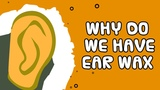 Why Do We Have Ear Wax - Amazing Facts About Human Body
