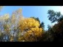 Осенние раскраски видео обзор . Мой город Карачев.