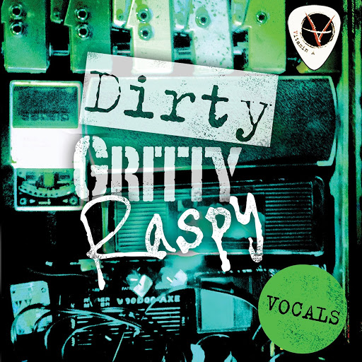 ViTAMiN альбом Dirty Gritty Raspy Vocals
