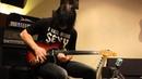 STEVE VAI Bad Horsie Fretless Guitar Cover by Александр Сенюшин