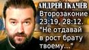 Второзаконие 23:19, 28:12. Не отдавай в рост брату твоему Андрей Ткачёв