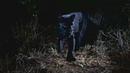 В Кении впервые за 100 лет сфотографировали чёрного леопарда