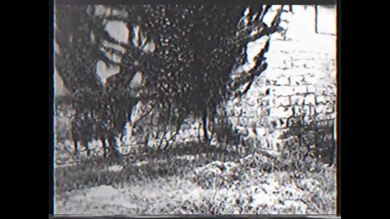 Found Footage Super 8 - VHS Transfer 16.62538.59_ Fragment 76D