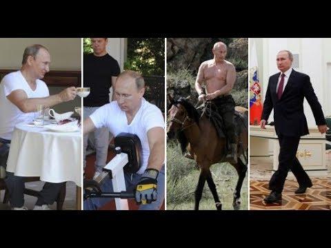 Putin y su Rutina Diaria madrugar, nadar, dominar el mundo, domesticar dinosaurios