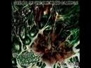 Purulent jacuzzi. Full album 2008