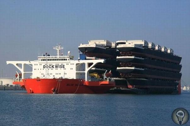 MV «Blue Marlin» судно, перевозящее корабли Когда возникает необходимость перевезти большое количество судов (при условии, если сами они еще не готовы к спуску на воду), передвинуть гигантскую