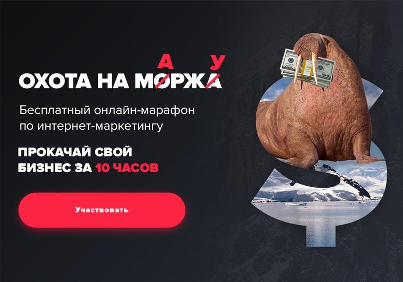 Александр Соколовский   Москва