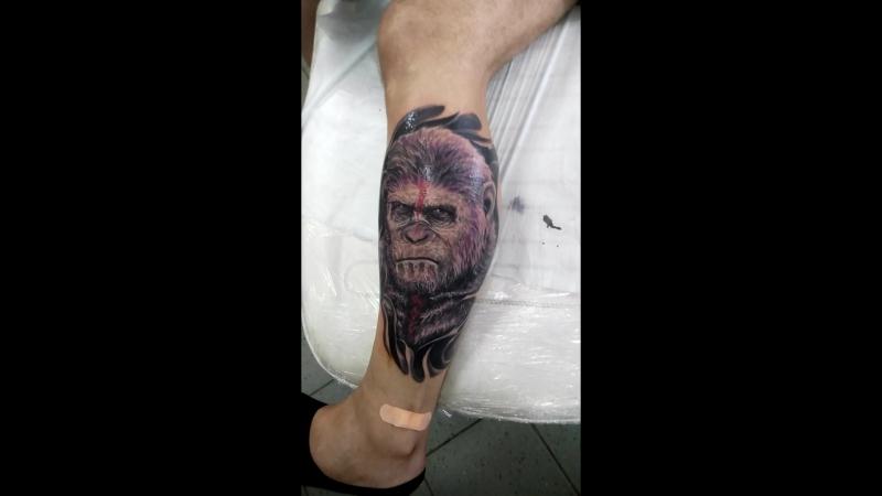 Цезарь!! Планета обезьян