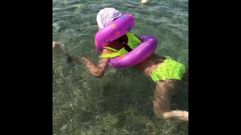 Шепси 2018 Плавание