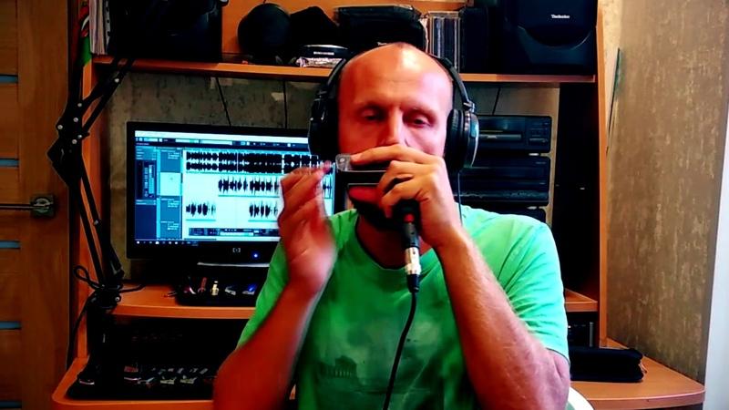 Dubharp harmonica cover - Enya - Boadicea
