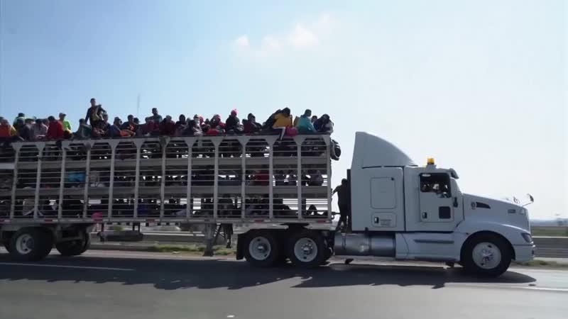 Слово Трампа не закон_ караван мигрантов продолжает путь к границе США