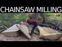 HUGE CHAINSAW MILLING JOB 45 Foot White Oak