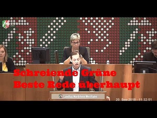 Tim Kellner Beste AFD Rede noch besser als Curio