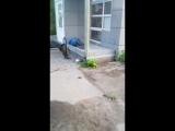 Обычное воскресное утро в Иванове