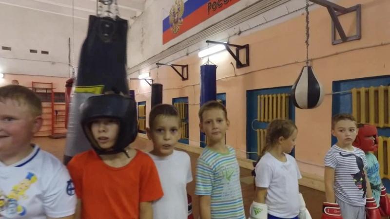 Школа бокса Чайка