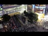 Шибуя: самый загруженный перекресток мира // Shibuya: World's Busiest Intersection
