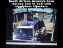 Mamie a compris comment il fallait s'occuper des singes en Afrique du Sud